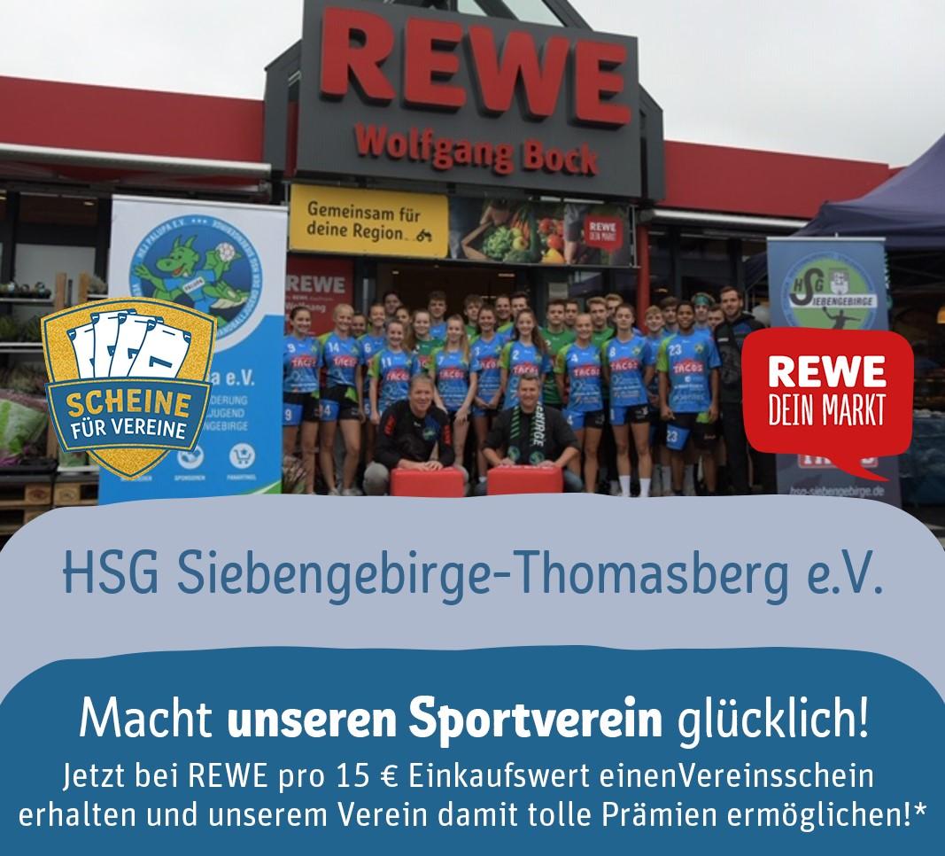 HSG2021 REWE Vereinsscheine Header
